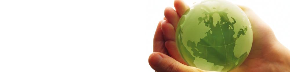 Globe Logo - MTM - Micro Trace Minerals - Laboratorio clinico e ambientale